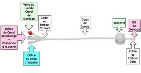 cours d irrigation et drainage pdf