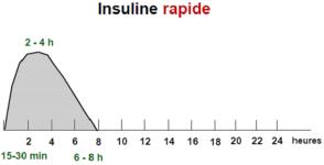 Bon Usage Des Insulines Et De Leurs Stylos Insulines D Action Rapide Et Breve Insulines Pour Manger